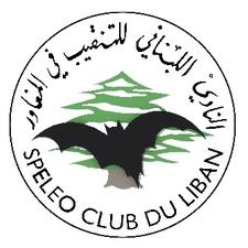 Company logo scl logo