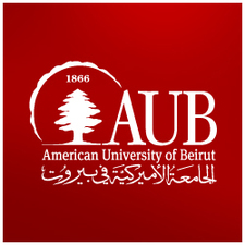 Company logo aub logo 2