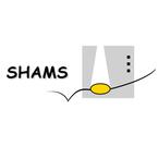 Partner logo shams