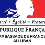 Partner logo french embassy